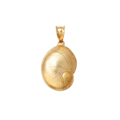 Baby's Ear Shell Pendant