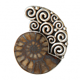 Sterling Ammonite Pendant