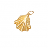 Cat's Paw Shell Pendant/Charm