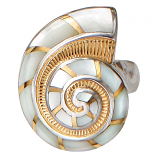 Nautilus Ring