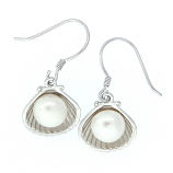 Scallop and Pearl Earrings