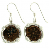 Ancient Judean Widow's Mite Earrings
